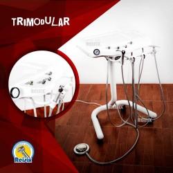 Trimodular